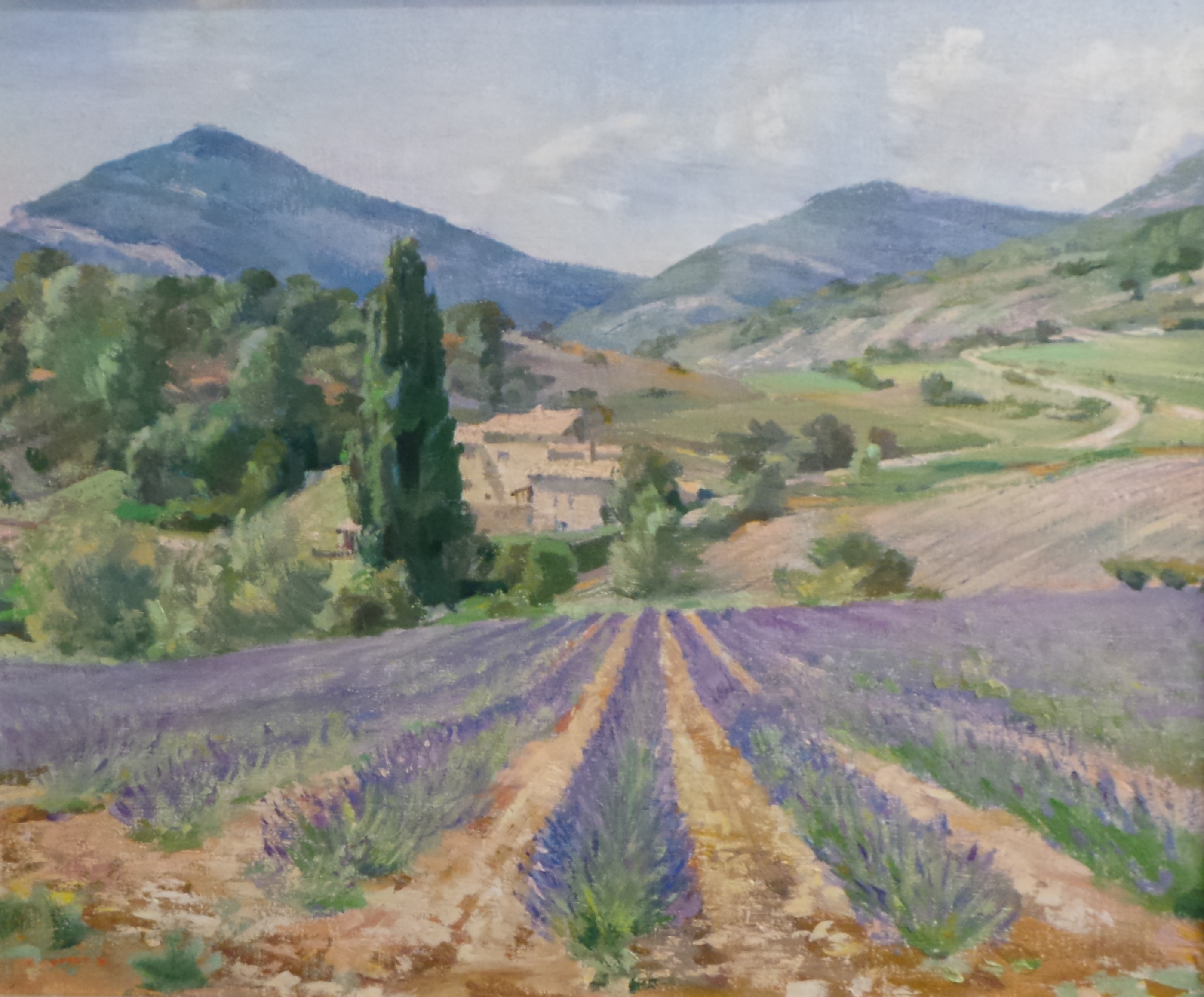 René Cottet - Lavender fields in the Provence, France